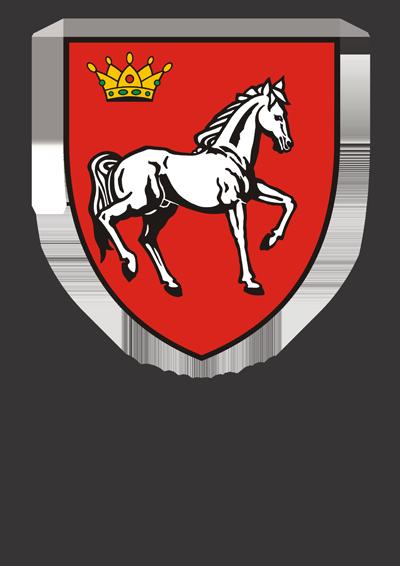 CJ IASI
